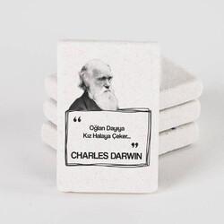- Darwin Esprili Taş Buzdolabı Magneti