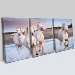 - Mustang Tasarım 3 Parça Kanvas Tablo