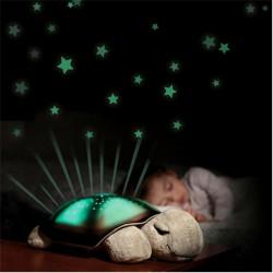 - Müzikli ve Işıklı Kaplumbağa