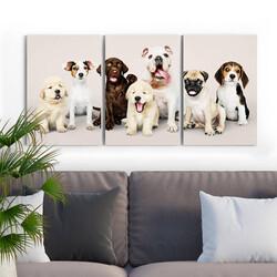 - Sevimli Köpekler 3 Parça Kanvas Tablo